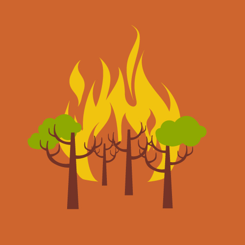 Illustration of a forest fire
